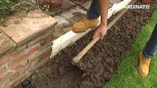 Preparación del terreno para plantación de enredaderas