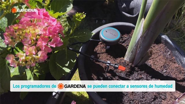 Controladores de riego por Bluetooth