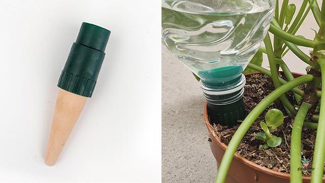 Cono cerámico para autorriego con adaptador universal para botellas