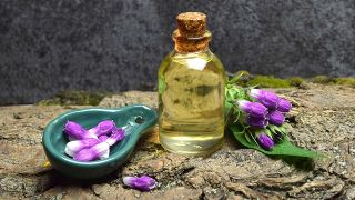 Consuelda, planta medicinal antiinflamatoria y cicatrizante - Aceite macerado
