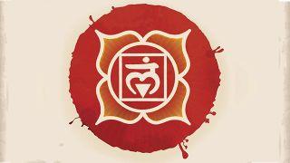 7 chakras o centros de energía del cuerpo - Muladhara