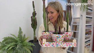 Jardinería y Manualidades: Revivir un cactus, decorar macetas con Decoupage y reciclar una caja de fresas