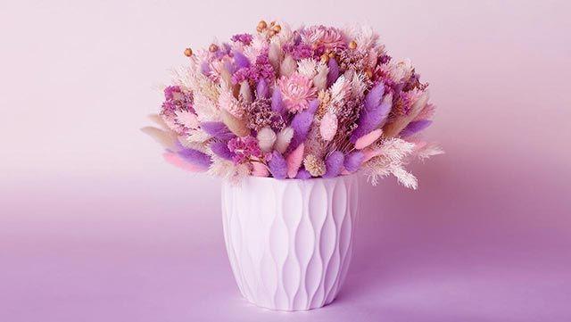 Flores preservadas para decorar
