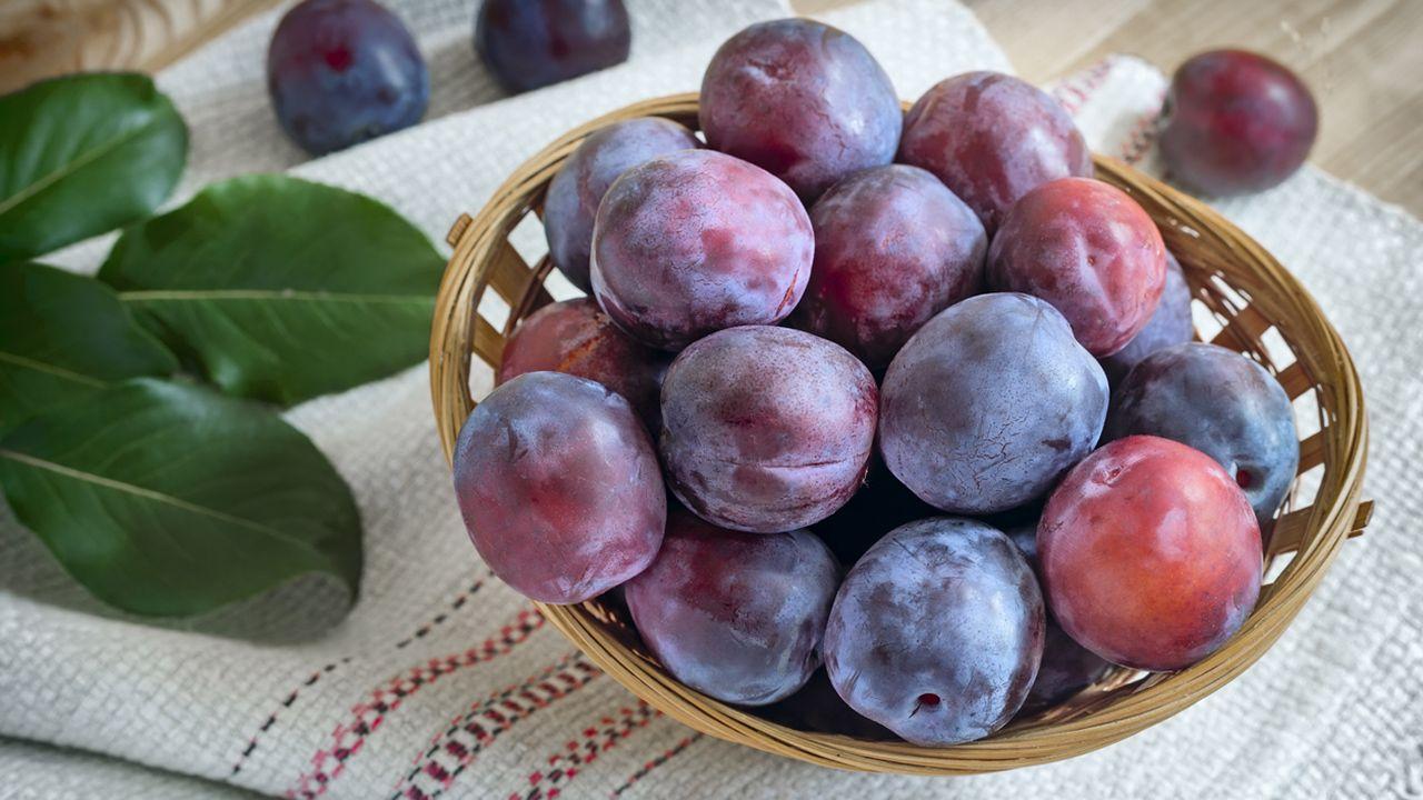 Ciruela, fruta laxante que ayuda a bajar el colesterol