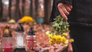 6 flores para el Día de Todos los Santos