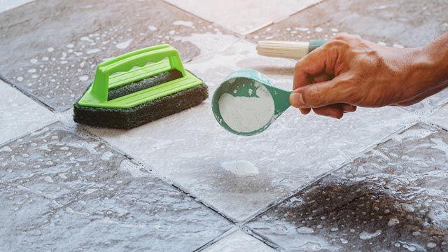 Cómo eliminar los gusanos blancos que aparecen en el suelo de la cocina