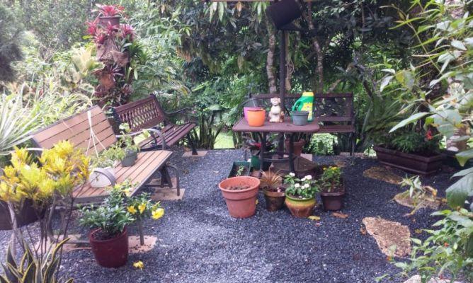 Jard n de relajaci n puertorrique o en la comunidad de - Hogarmania jardineria ...