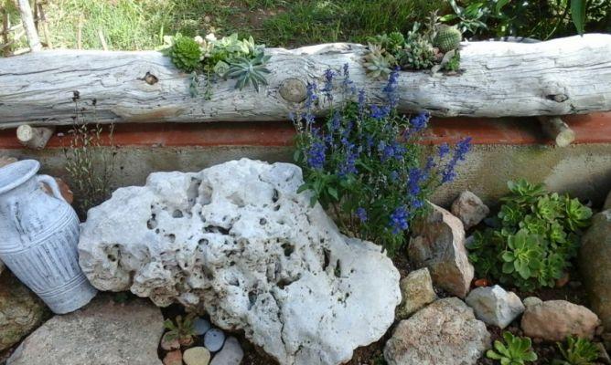 Un tronco del mar bien aprovechado en la comunidad de - Hogarmania jardineria ...