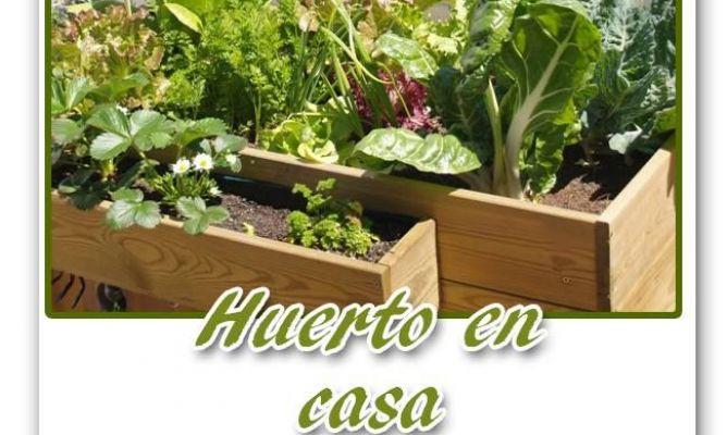 Huerto urbano ecol gico en casa en la comunidad de - Hogarmania jardineria ...