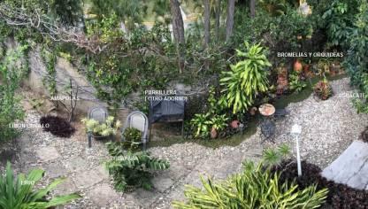 Bajo el platanal en la comunidad de jardiner a - Hogarmania jardineria ...