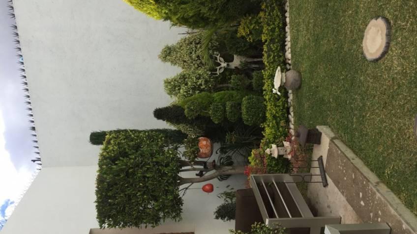 Jard n de mi casa en la comunidad de jardiner a - Hogarmania jardineria ...
